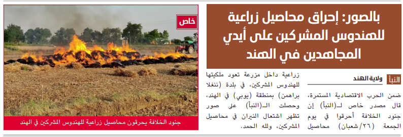 The report that appeared in ISIS's weekly and documentation of the fields going up in flames (Al-Naba', Telegram, April 15, 2021)
