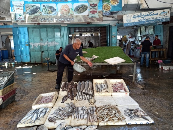 A Gazan fisherman displays his catch after the fishing zone was enlarged (Safa Facebook page, September 2, 2021).